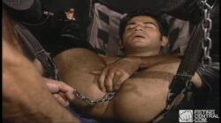 Zak Spears pend Dexter aux chaînes et le baise dans ce porno Beeg